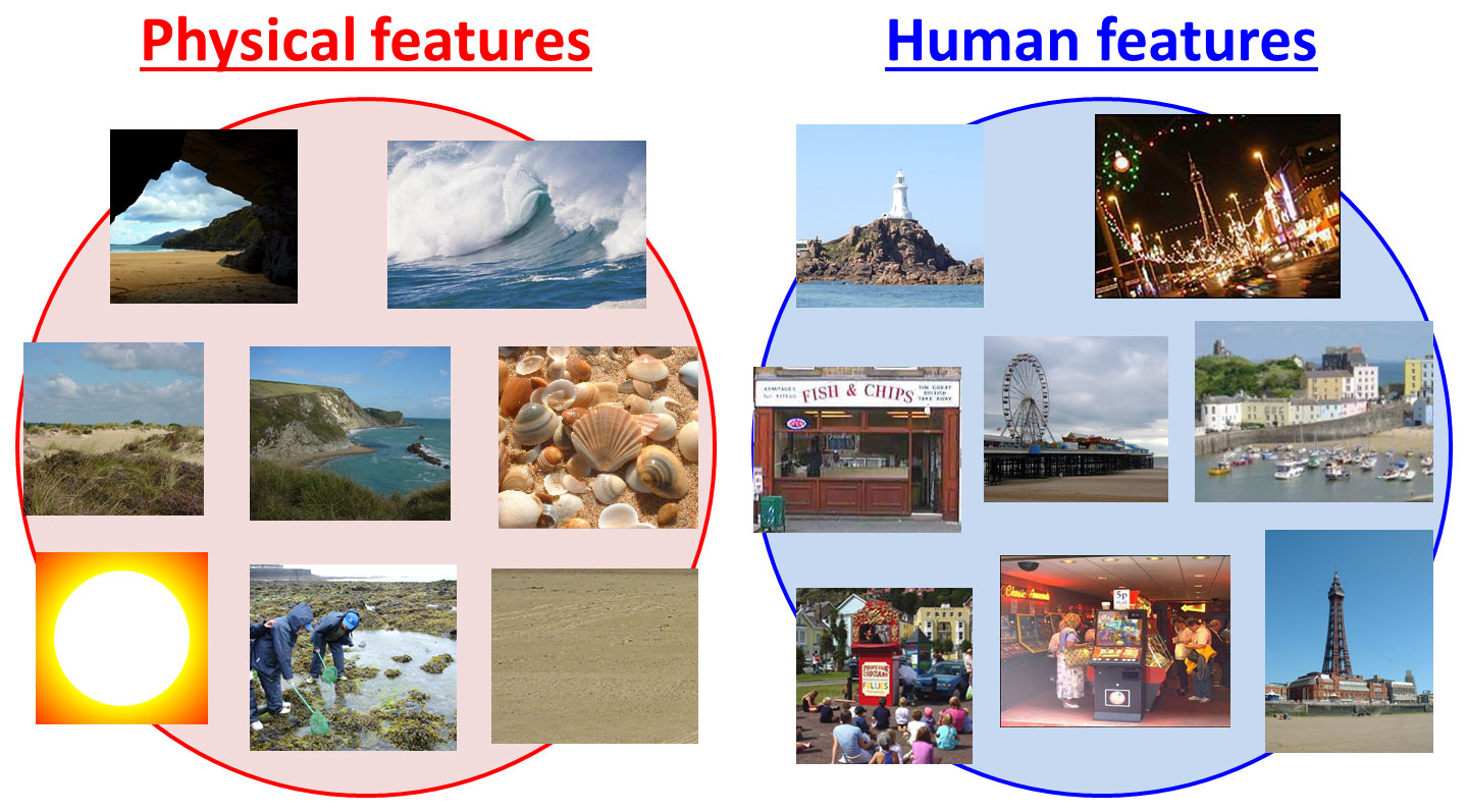 Image result for features of the seaside
